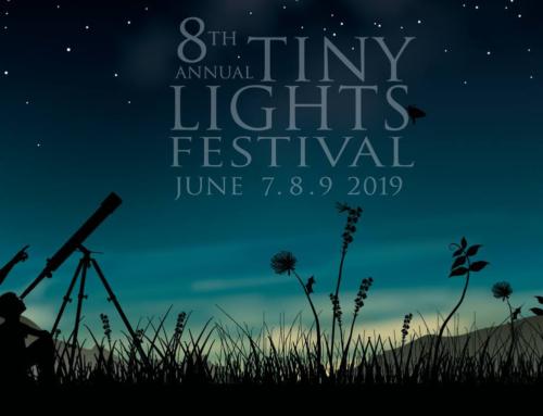 Playlist Friday: Tiny Lights Festival